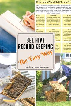 Bee hive record keeping the easy way - Carolina Honeybees #beekeepingideas