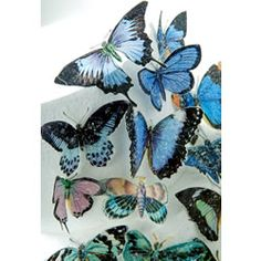 Butterflies come in several colors-Edible wafer paper to transfer images to Your Cupcakes or Cake