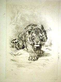 Delacroix. Tigre à l'Affût. Eugène Delacroix Pointe-sèche et burin,