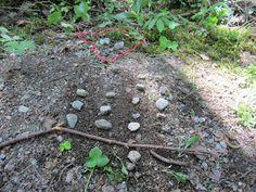 Pylväsdiagrammeja metsässä Oppilaat rajaavat metrinarullaan alan metsästä ja laskevat kuinka paljon alueella on mitäkin. Sen jälkeen tehdään pylväsdiagrammi alueen sisällöstä. Open ideat