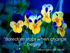 """Boredom stops when change begins"""