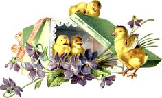 Glanzbilder - Victorian Die Cut - Victorian Scrap - Tube Victorienne - Glansbilleder - Plaatjes : Osterküken - easter chicks - poussins de Pâques - Glanzbild - Victorian Die Cut - Tube victorienne