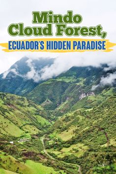 2020 Updated Information about visiting Mindo Cloud Forest in Ecuador. From where to stay, to what to do and what to eat, enjoy this complete guide of Mindo Paradise, Clouds, Travel, Viajes, Destinations, Traveling, Trips, Cloud, Heaven
