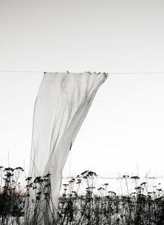 """ Photo by Daniella Witte """