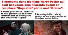 """8 moments dans Harry Potter quand on remplace """"Baguette"""" par le mot """"Graine"""""""