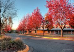#Kwantlen #Polytechnic #University in #langley, BC. #photography by Ernie Kasper