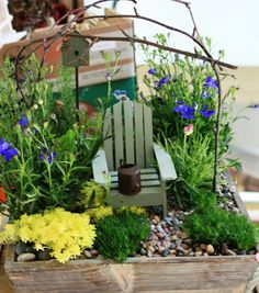 This is adorable. The little Muskoka chair and flowers. Reminds me of my parents' cottage.