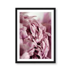 Botanik Artprint Peonie