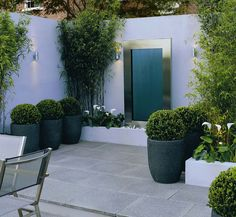 Courtyard garden with grey, round plant pot | adamchristopherdesign.co.uk