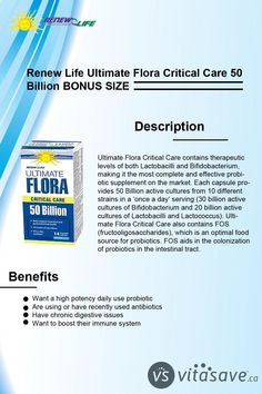 Flora Critical Care's blend of 50 Billion active cultures from 10 different strains in a 'once a day' serving helps ensure a healthy microbacterial environment in the intestinal tract.The term 'probiotic' means supporting life. Probiotics are friendly, beneficial bacteria. Lactobacillus Acidophilus, Candida Overgrowth, Flora Intestinal, Cleanse Program, Critical Care, Abdominal Pain, Environment