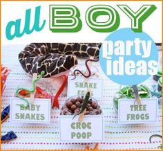 """Wild Man Reptile Party. Awesome party ideas for BOYS. Creative ideas for party treats, snacks and party favors. """"Live Action!"""""""