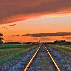 Mississippi Delta sunset photograph by Roy Meeks