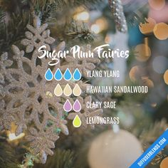 Essential Oil Scents, Essential Oil Perfume, Essential Oil Diffuser Blends, Essential Oil Uses, Doterra Essential Oils, Aroma Diffuser, Essential Oils Christmas, Essential Oil Combinations, Aromatherapy Recipes