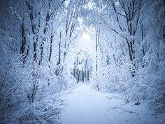 2m(L)x1.5m(H) Blanc Couvert de neige couvert Photographie... https://www.amazon.fr/dp/B01GV2AXTS/ref=cm_sw_r_pi_dp_x_1gvlybSPVWRF2