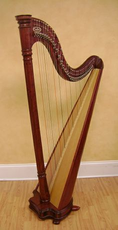 Salvi Ana - Lever 38 strings