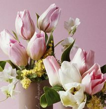 Gallery : Naomi Yamamoto's Sugarcraft Studioo Cake Flowers, Fondant Flowers, Sugar Flowers, Wilton Fondant, Cupcake Cakes, Cupcakes, Flower Bouquets, Sugar Art, Yamamoto
