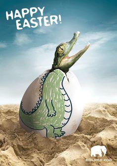 Zoo Cologne: Happy Easter Eggs, Crocodile repinned by www.BlickeDeeler.de