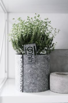 Lovely oohh pots are handmade Fair Trade products from recycled paper, sand, natural latex/rubber and leftover products from mahogny tree parts from furniture facturies  in Sri Lanka. Handmade by selected women for a Danish Company. Totally waterproof! http://www.unikdesign.nu/oohh.html