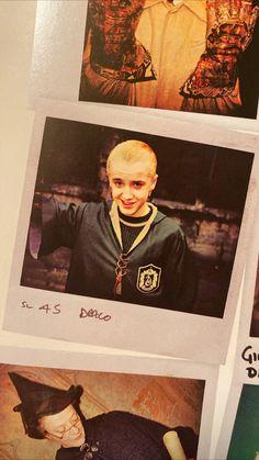 Objet Harry Potter, La Saga Harry Potter, Harry Potter Draco Malfoy, Harry Potter Pictures, Harry Potter Fandom, Harry Potter Characters, Hogwarts, Slytherin, Draco Malfoy Aesthetic