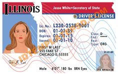 This is Illinois (USA State) Drivers License PSD (Photoshop) Template. On this PSD Template you can put any Name,Address, License No. DOB etc and make your personalized Driver License.  You can also print this Illinois (USA State) Drivers License from a professional plastic ID Card Printer and use as per your requirement.