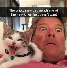 The photos my dad sends me of the new kitten he doesn't want