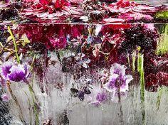 Locked in the ether | Gallery | Photographer KENJI SHIBATA