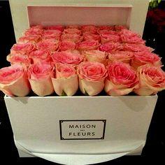 rosas rosas en caja de francia