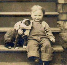 vintage pit bull photos | Vintage Pit Bulls | Pit Bulls throughout history