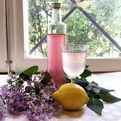 Det är lätt att göra saft av syrener. Resultatet blir blommigt och gott. Nu är det dags. Fyll en liten korg med doftande blommor och förvandlad dem till en uppfriskande dryck.