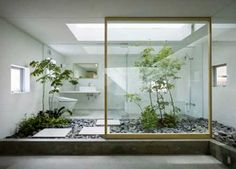 modern bathroom design with small garden and glass wall
