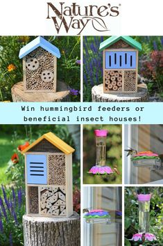 Enter to win one of two prize packages from Nature's Way Bird Products!  Winner #1 will win four So Real Nectar Feeders. These feeders showcase a unique vibrantly colored design which mimics flowers that attract hummingbirds.  Winner #2 will win three Better Gardens Insect Houses. Made with rot resistant premium cedar, these beneficial insect houses attract a wide variety of insects that can help increase pollination and improve plant health naturally without the use of harsh chemicals.