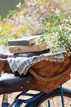 bicycle book basket