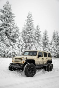 Jeep - TeraFlex Jeep.......we love to wheel in the snow!