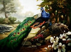 A peacock has too little in its head, too much in its tail. (Quote by - Swedish proverb)