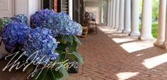 Enjoy the beautiful UVA grounds  http://www.virginia.edu/uvatours/groundstour/