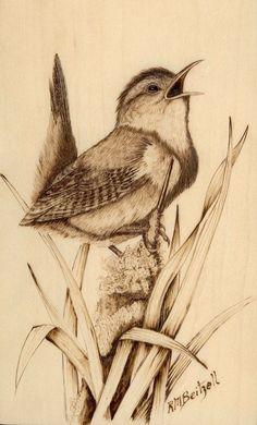 bird, wren, singing, 2ae1822d836821c7d8b4b86565a12d0f.jpg (500×827)