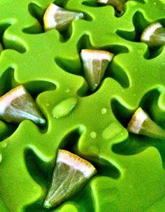 Lemon wedge ice cubes!? Genius.