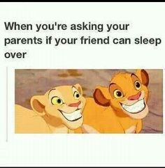 Lion king friends sleeping over being perfect angels favorite movie disney kids . - Lion king friends sleeping over being perfect angels favorite movie disney kids cubs lions The Effe - Really Funny Memes, Stupid Funny Memes, Funny Relatable Memes, Funny Posts, Hilarious, Funny Stuff, Top Funny, Funny Things, Jokes