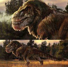 6682 To se mi líbí 55 komentářů Jurassic World Spain ( T Rex Jurassic Park, Jurassic World Dinosaurs, Dinosaur Drawing, Dinosaur Art, Dinosaur Crafts, Prehistoric World, Prehistoric Creatures, Feathered Dinosaurs, Dinosaur Fossils