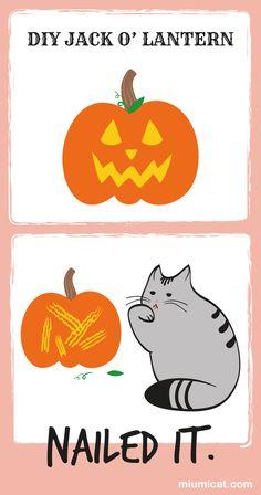 funny cat Halloween jack o'lantern nailed it #nailedit #fail #funnycats