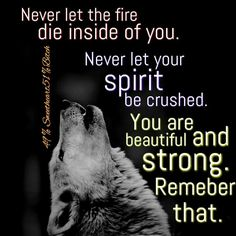 Famous and Top Wolves Quotes and The best Wolf Sayings and Quotes Image Collection. True Quotes, Great Quotes, Quotes To Live By, Motivational Quotes, Inspirational Quotes, Lone Wolf Quotes, Wolf Pack Quotes, Wolf Qoutes, Warrior Quotes