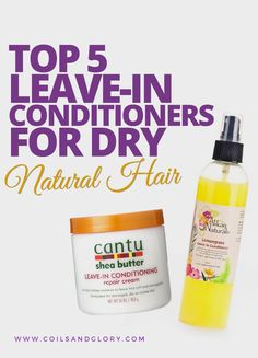 TOP 5 leave-in Conditioners for DRY Natural Hair