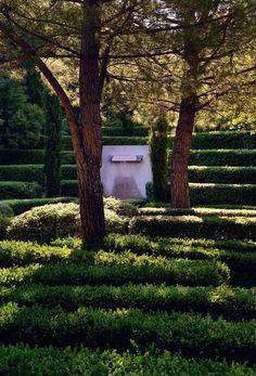 Shade loving garden in Provence