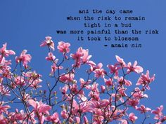Anais Nin Quotes Blossom - ALicia Keys - Element of Freedom