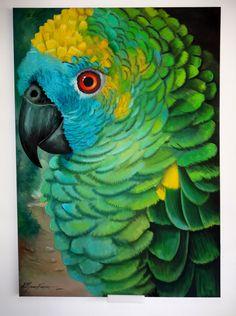Um lindo exemplar da fauna, com uma imensa gama de verdes, temos um papagaio que só falta falar.
