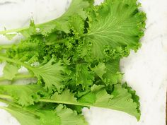 Large, upright plants with crumpled leaves that have a delicious mustard taste; slow to bolt and very easy to grow.
