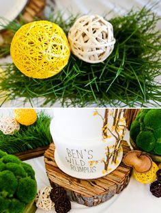 Yarn balls, wheat grass, whit branches with small tissue poms, wood