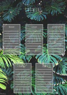 Schedule Design, Schedule Templates, Weekly Planner Printable, Planner Template, School Planner, School Design, Bujo, Back To School, Plant Leaves