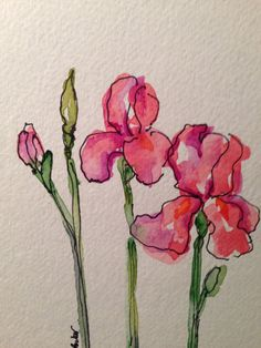 Iris Watercolor Card by gardenblooms on Etsy, $3.50