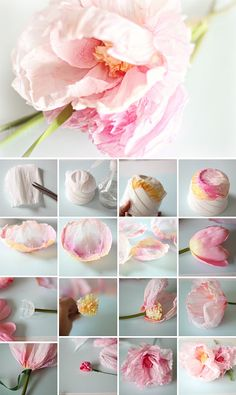 Crepe+Paper+FLowers+DIY Crepe and Watercolour Flower TutorialCraftberry Bush: Crepe and Watercolor Flower Tutorial ~she makes the most amazing crepe paper flower and is kind enough to show us how!Isn't this the prettiest little flower tutorial you have ev Faux Flowers, Diy Flowers, Fabric Flowers, Elegant Flowers, Beautiful Flowers, Watercolor Flowers Tutorial, Paper Flower Tutorial, Watercolour Flowers, Watercolor Tutorials